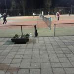 toernooi